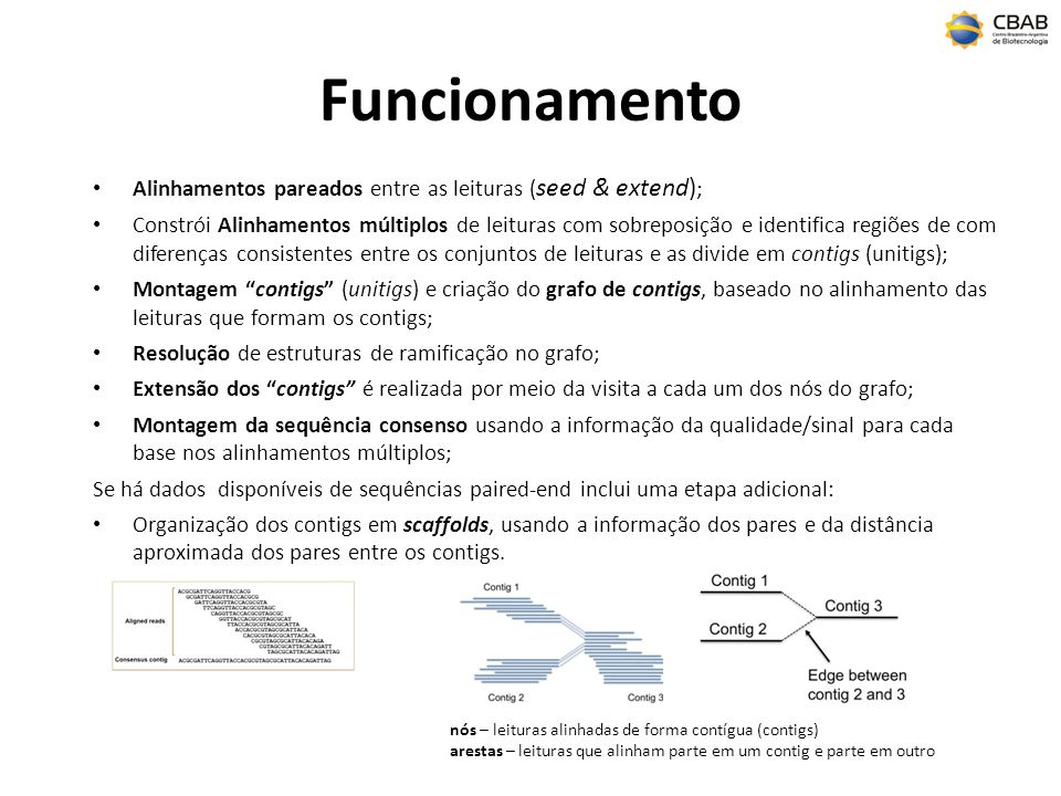 Funcionamento Alinhamentos pareados entre as leituras (seed & extend);