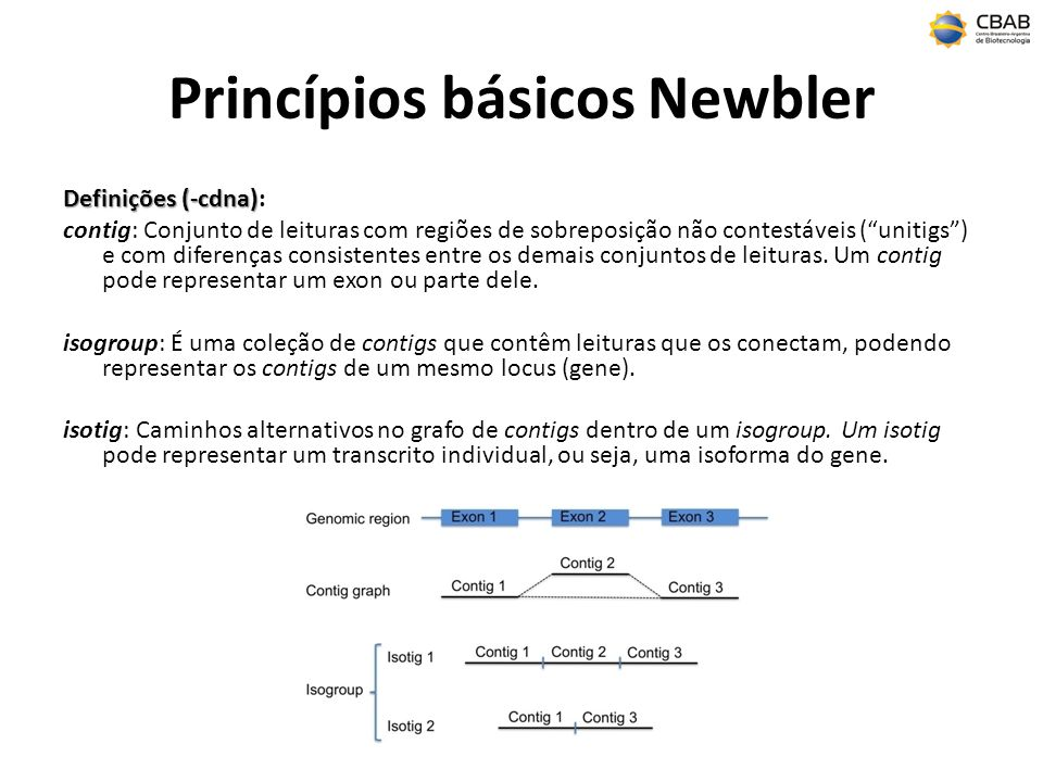 Princípios básicos Newbler
