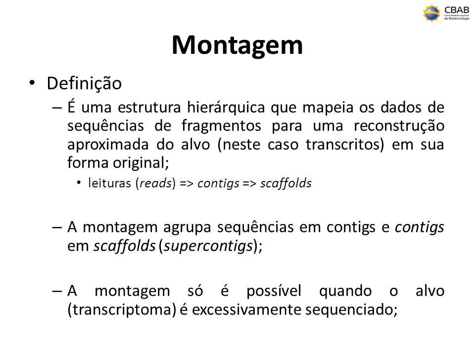 Montagem Definição.