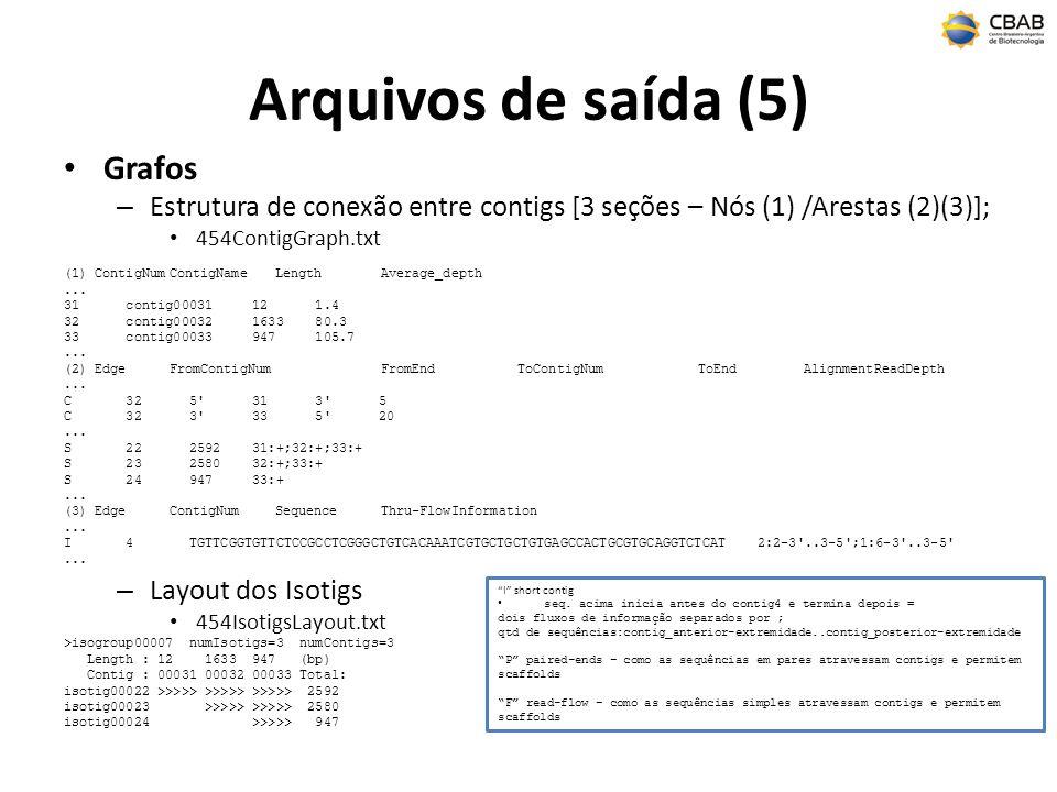 Arquivos de saída (5) Grafos