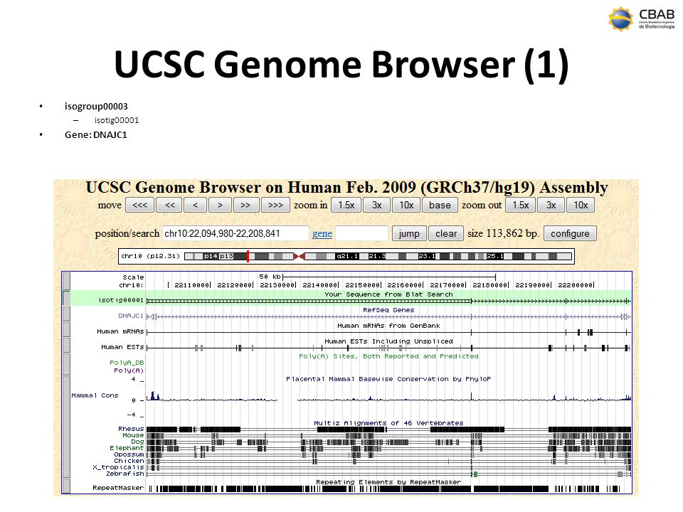 UCSC Genome Browser (1) isogroup00003 isotig00001 Gene: DNAJC1