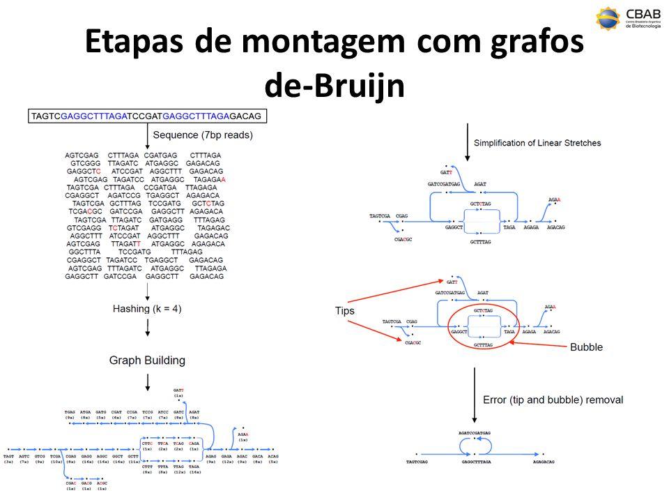 Etapas de montagem com grafos de-Bruijn