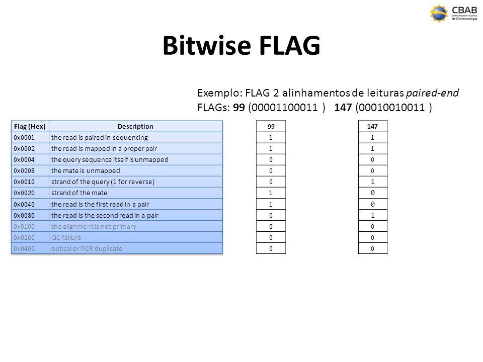Bitwise FLAG Exemplo: FLAG 2 alinhamentos de leituras paired-end