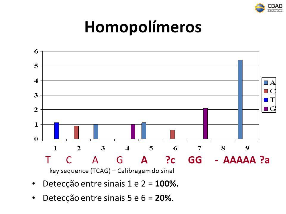 Homopolímeros T C A G A c GG - AAAAA a