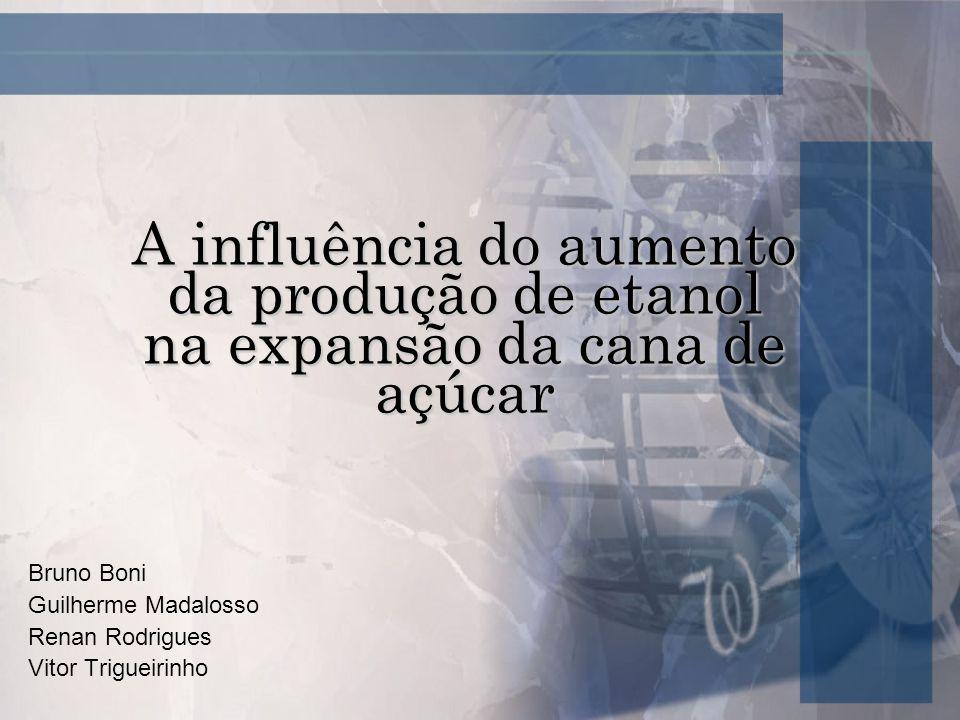 Bruno Boni Guilherme Madalosso Renan Rodrigues Vitor Trigueirinho