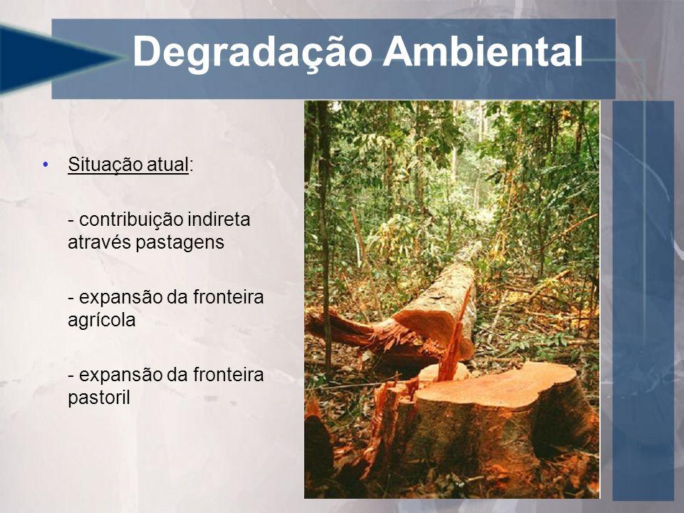 Degradação Ambiental Situação atual:
