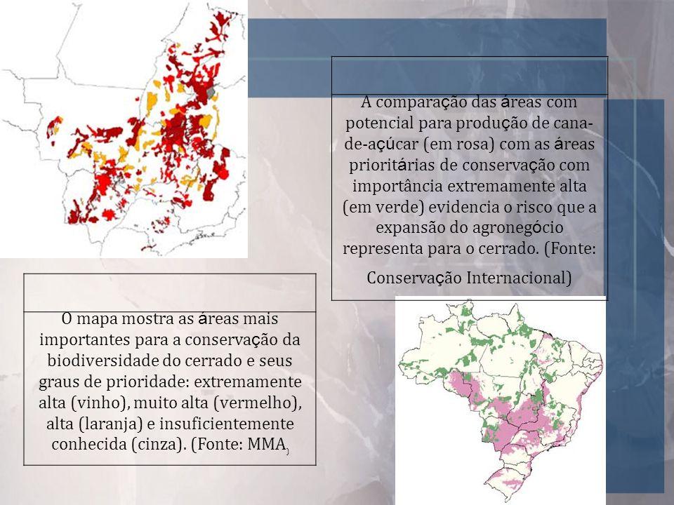 A comparação das áreas com potencial para produção de cana-de-açúcar (em rosa) com as áreas prioritárias de conservação com importância extremamente alta (em verde) evidencia o risco que a expansão do agronegócio representa para o cerrado. (Fonte: Conservação Internacional)