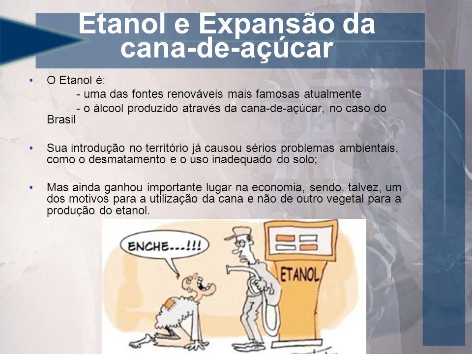 Etanol e Expansão da cana-de-açúcar