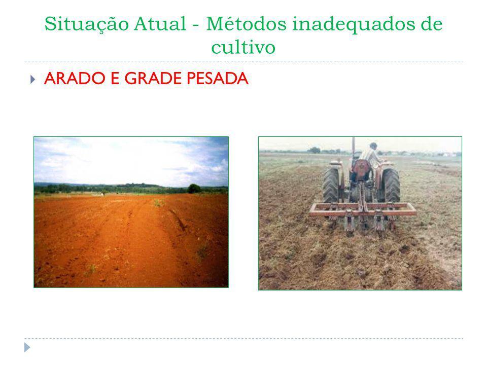 Situação Atual - Métodos inadequados de cultivo