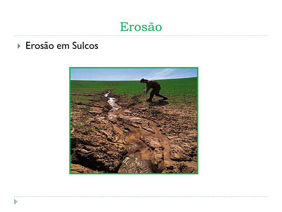 Erosão Erosão em Sulcos