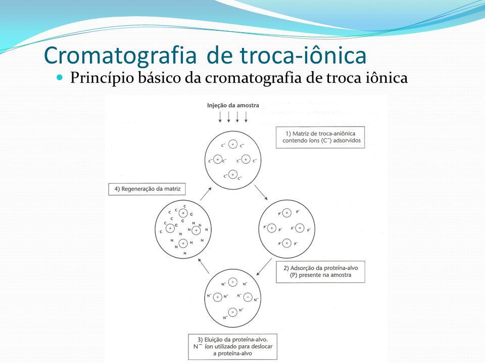 Cromatografia de troca-iônica