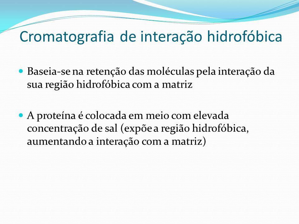 Cromatografia de interação hidrofóbica