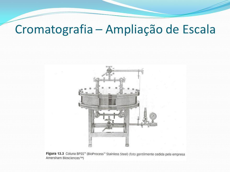 Cromatografia – Ampliação de Escala