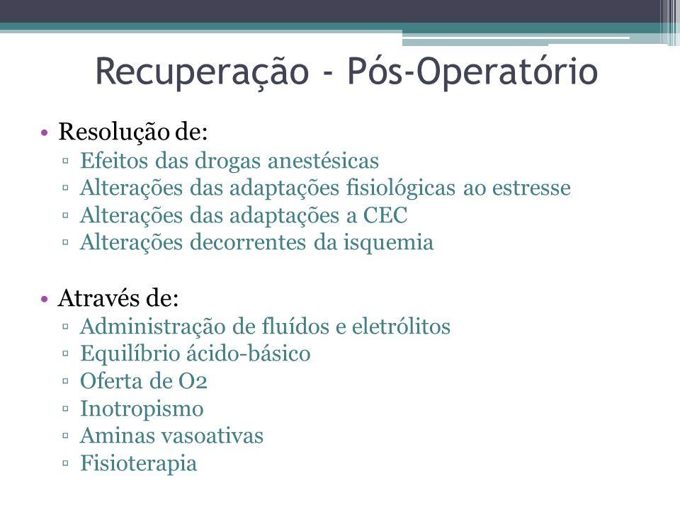 Recuperação - Pós-Operatório