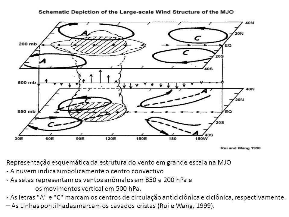 Representação esquemática da estrutura do vento em grande escala na MJO