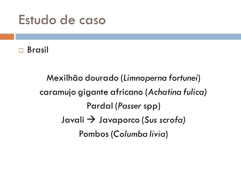 Estudo de caso Brasil Mexilhão dourado (Limnoperna fortunei)