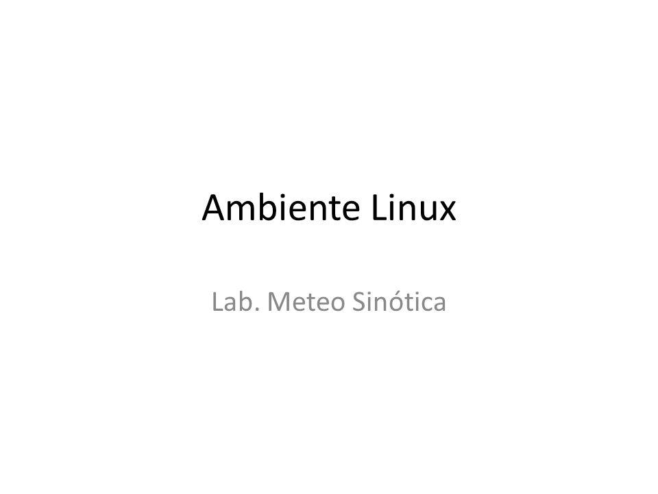 Ambiente Linux Lab. Meteo Sinótica