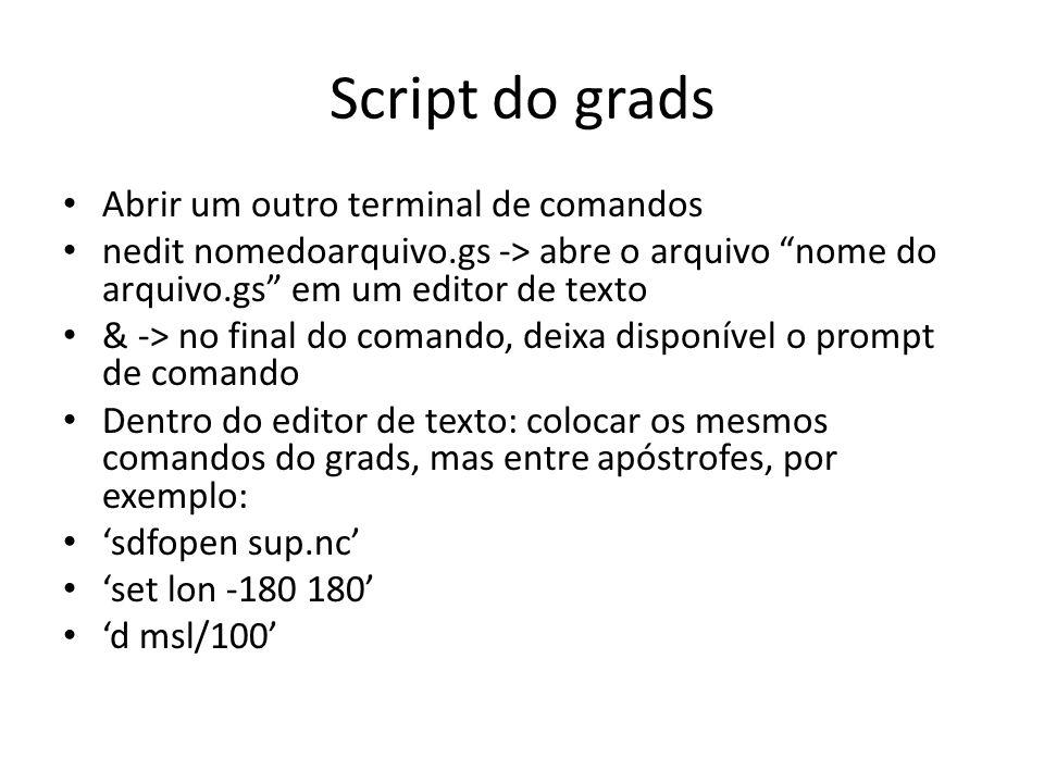 Script do grads Abrir um outro terminal de comandos