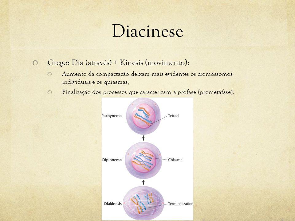 Diacinese Grego: Dia (através) + Kinesis (movimento):