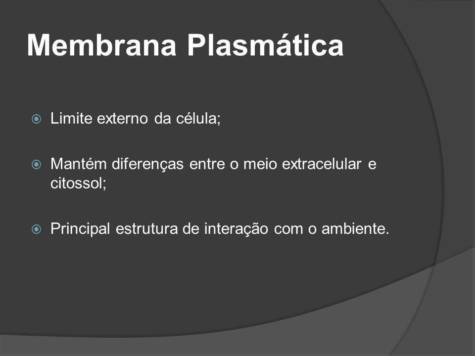 Membrana Plasmática Limite externo da célula;