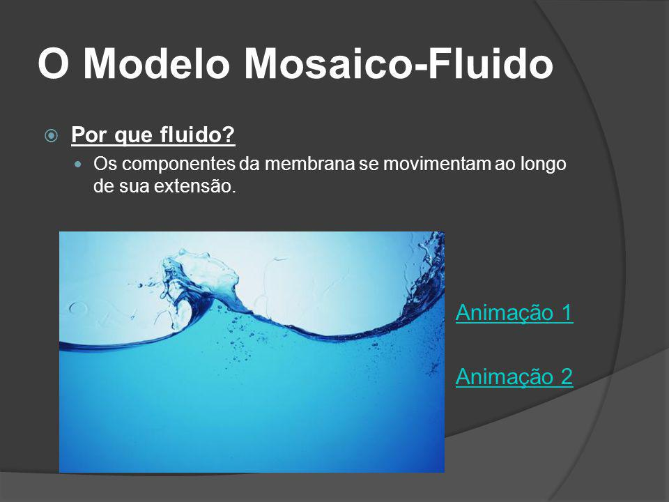 O Modelo Mosaico-Fluido