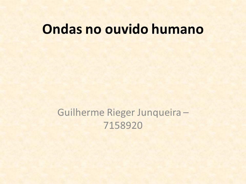 Guilherme Rieger Junqueira – 7158920