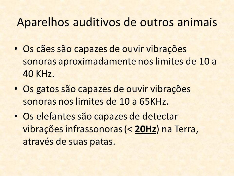 Aparelhos auditivos de outros animais