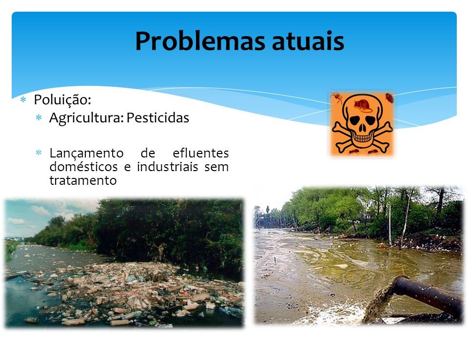 Problemas atuais Poluição: Agricultura: Pesticidas