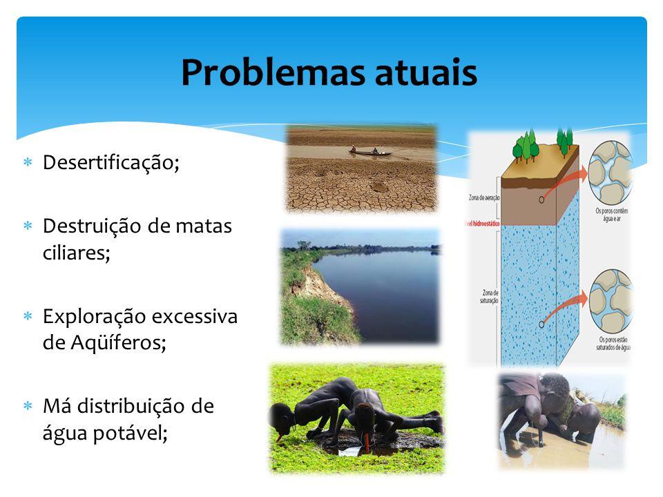 Problemas atuais Desertificação; Destruição de matas ciliares;