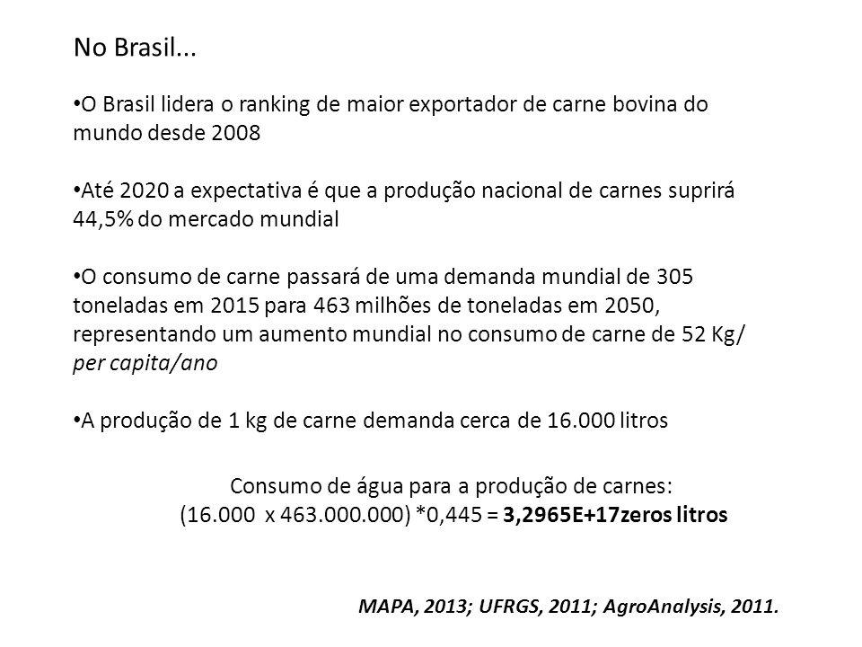 Consumo de água para a produção de carnes: