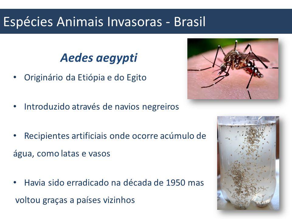 Espécies Animais Invasoras - Brasil