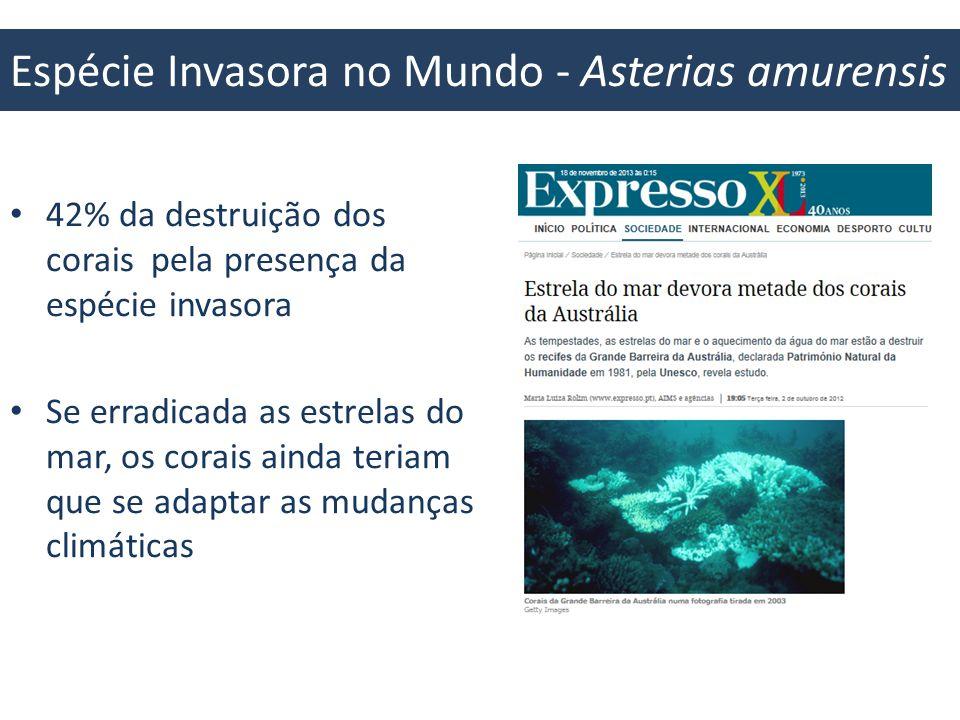 Espécie Invasora no Mundo - Asterias amurensis