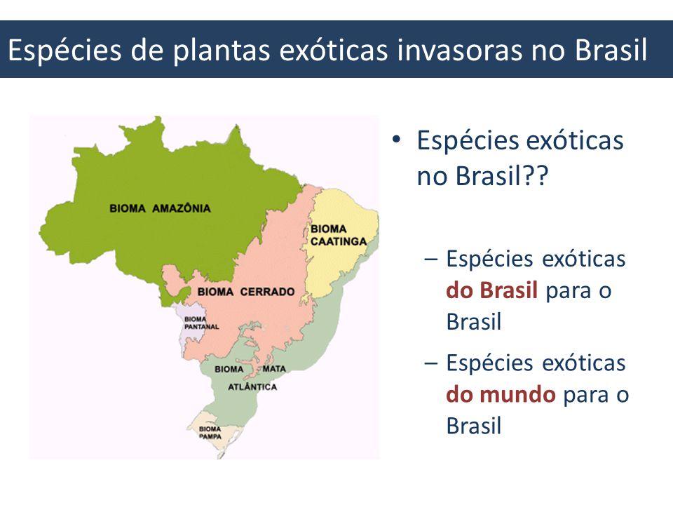 Espécies de plantas exóticas invasoras no Brasil