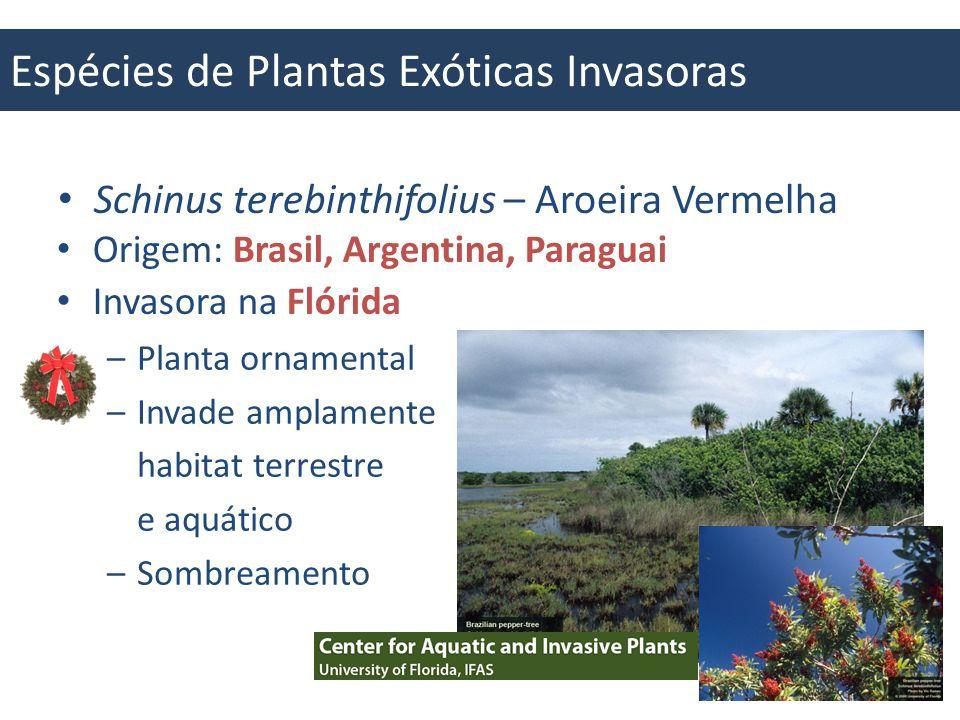 Espécies de Plantas Exóticas Invasoras