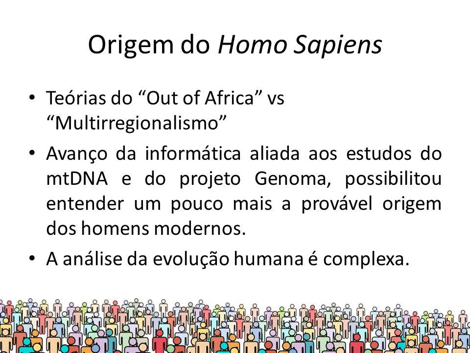Origem do Homo Sapiens Teórias do Out of Africa vs Multirregionalismo