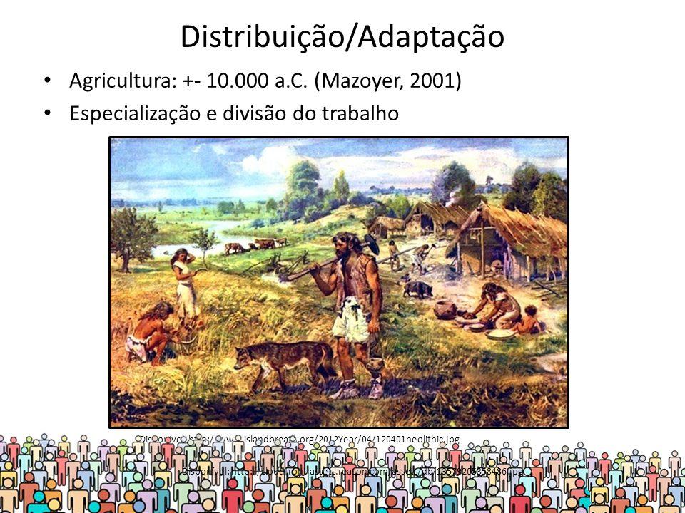 Distribuição/Adaptação