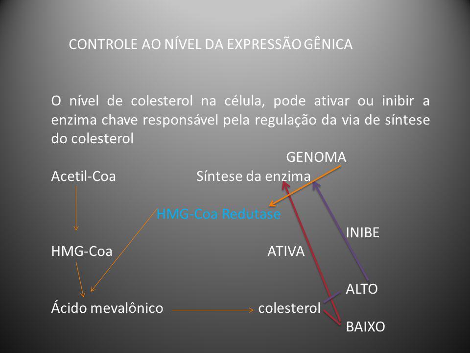 CONTROLE AO NÍVEL DA EXPRESSÃO GÊNICA