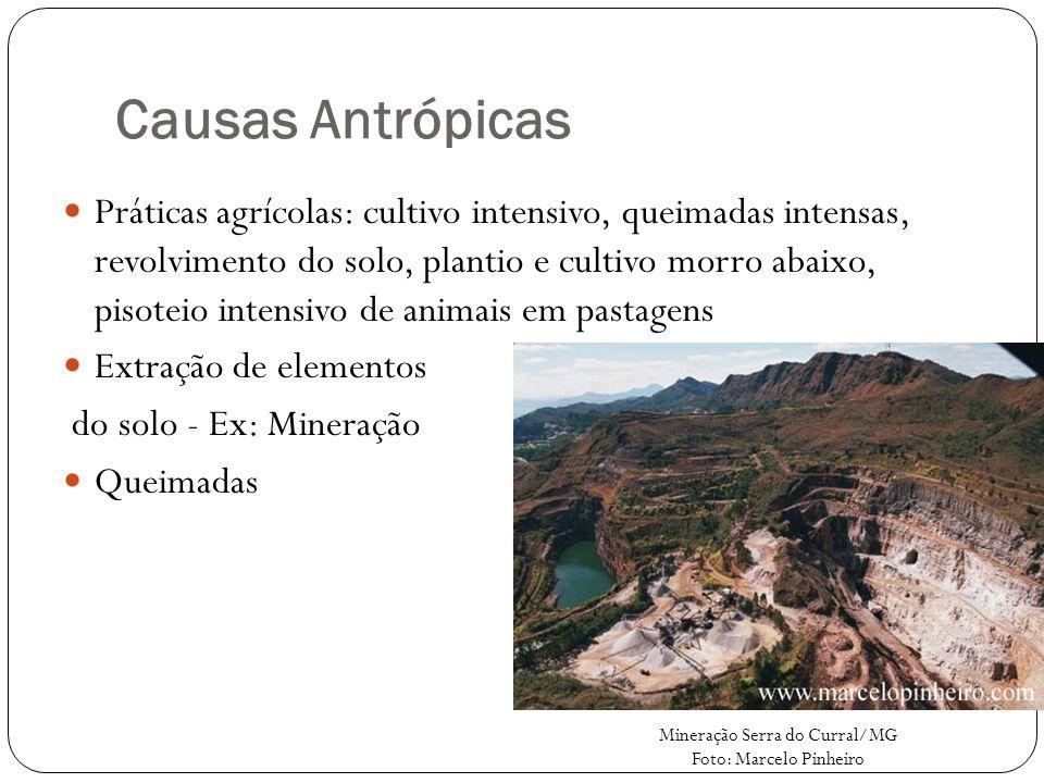 Causas Antrópicas