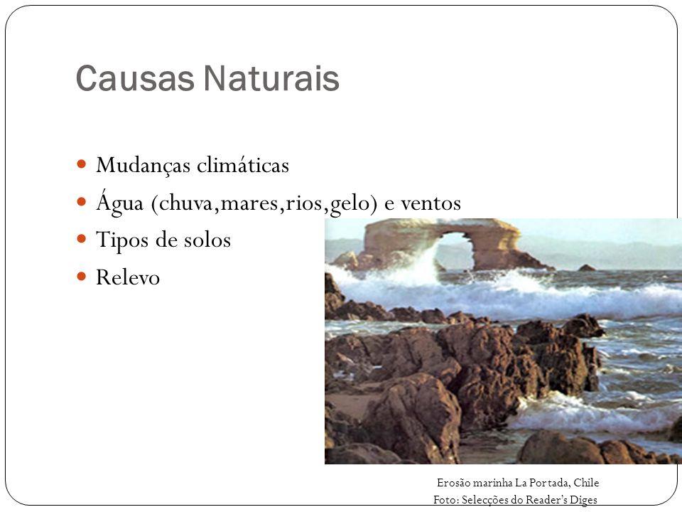 Causas Naturais Mudanças climáticas