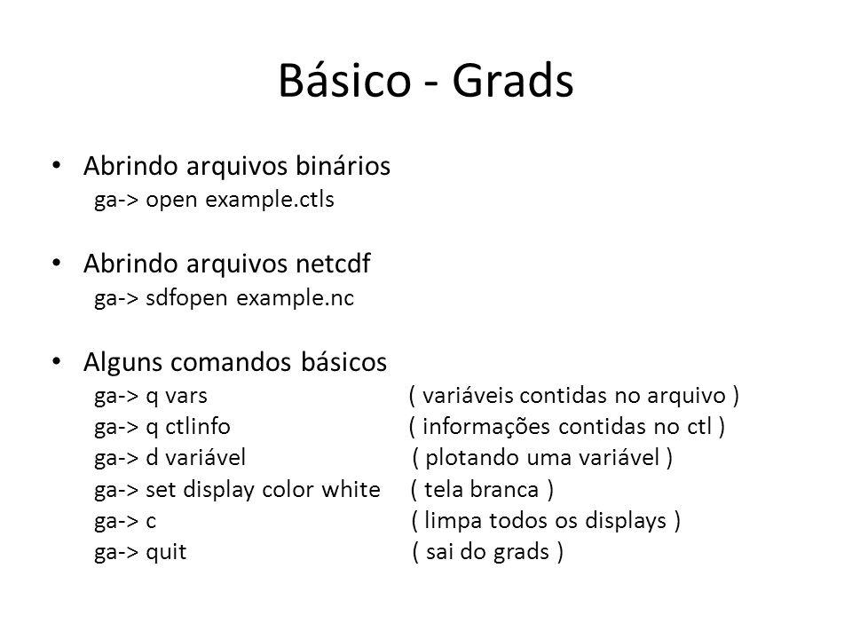 Básico - Grads Abrindo arquivos binários Abrindo arquivos netcdf