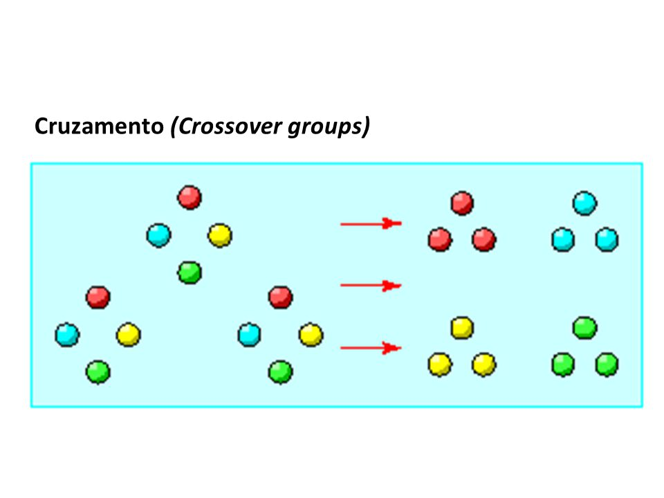 Cruzamento (Crossover groups)