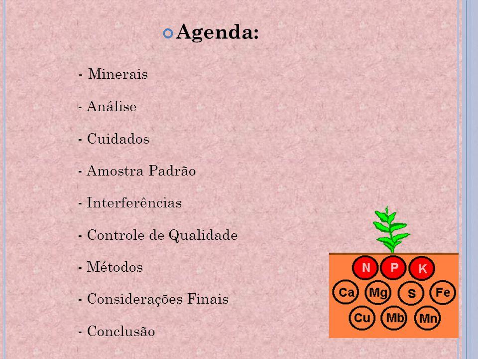 Agenda: - Minerais - Análise - Cuidados - Amostra Padrão