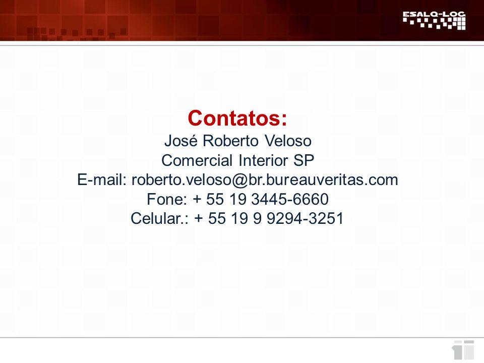 E-mail: roberto.veloso@br.bureauveritas.com