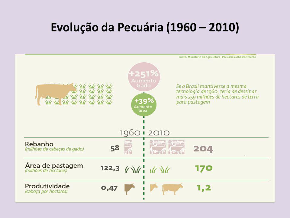 Evolução da Pecuária (1960 – 2010)