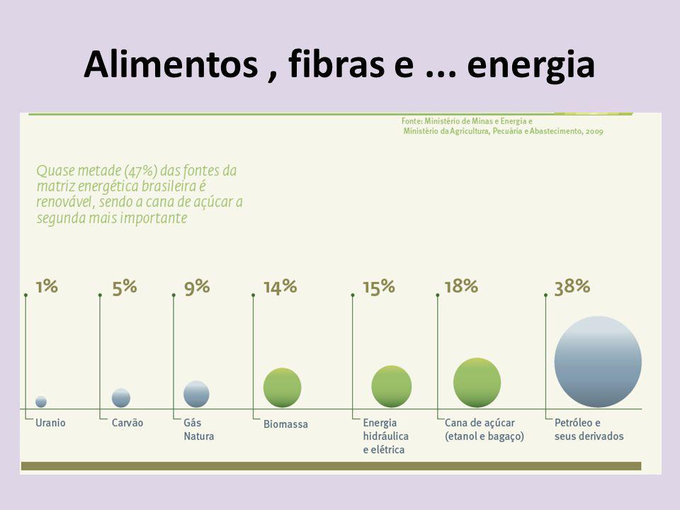 Alimentos , fibras e ... energia