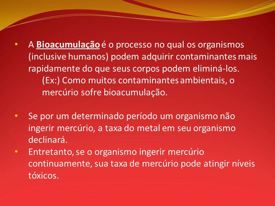 A Bioacumulação é o processo no qual os organismos (inclusive humanos) podem adquirir contaminantes mais rapidamente do que seus corpos podem eliminá-los.