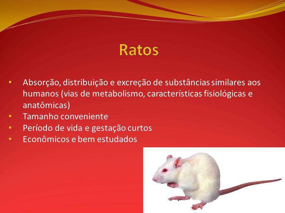 Ratos Absorção, distribuição e excreção de substâncias similares aos humanos (vias de metabolismo, características fisiológicas e anatômicas)