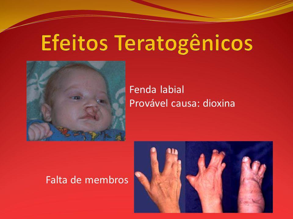 Efeitos Teratogênicos