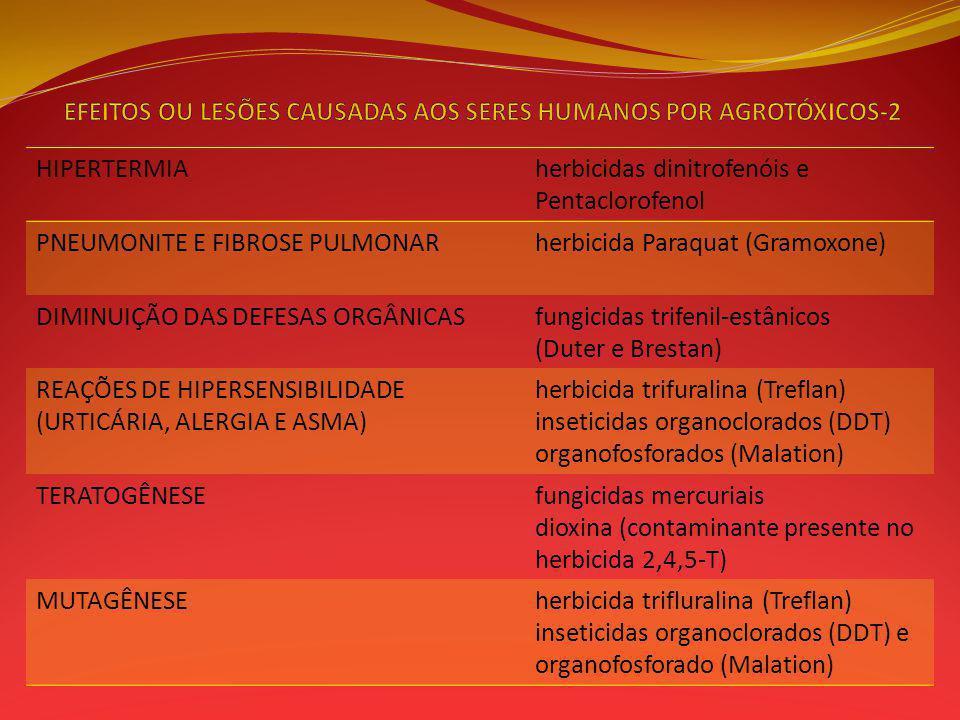 EFEITOS OU LESÕES CAUSADAS AOS SERES HUMANOS POR AGROTÓXICOS-2
