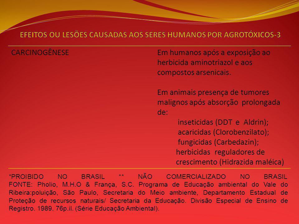 EFEITOS OU LESÕES CAUSADAS AOS SERES HUMANOS POR AGROTÓXICOS-3